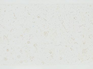 White dispersion, painting in preparatura-grund, 145x250cm, 2011.